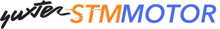 STM MOTOR Concesionario Oficial en Madrid